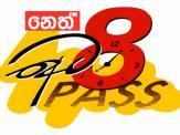8 Pass 20-11-2019