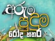 Aruma Puduma Roda Hathara 15-05-2021