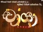 Chaya - Tele Drama
