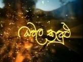 Dhawala Kandulu - Tele Drama