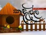 kadalla-22-02-2020