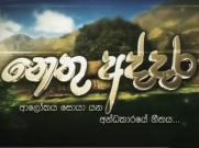 Nethu Addara - Tele Drama