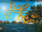 Piyum Vila